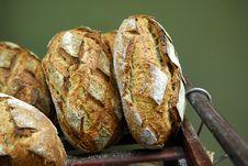 Free Bread Stock Photo - 5900300