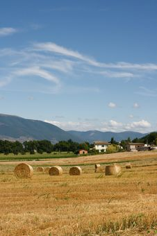 Free Hay Bales Royalty Free Stock Photography - 5900647