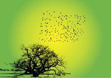 Free Birds With Tree Royalty Free Stock Photos - 5901408