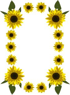 Free Frame Of Yellow Sunflowers Stock Images - 5902214