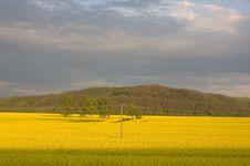 Free Landscape Stock Image - 5902851