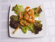 Shrimp S Salad On White Plate Royalty Free Stock Images