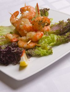 Shrimp S Salad On White Plate Royalty Free Stock Photo