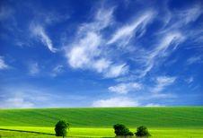 Free Field Stock Image - 5903151