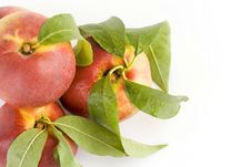 Free Peaches Royalty Free Stock Image - 5904446