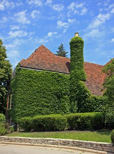 Ivy-Clad Garden Club Building In The Suburbs Of Ch