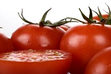 Free Tomatoes Stock Images - 5905334