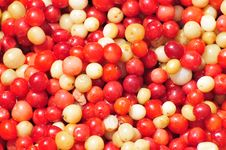 Free Fruit Stock Images - 5906094