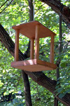 Free Birdfeeder Royalty Free Stock Photo - 5906885