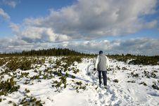 Free Trekking On Snow Royalty Free Stock Photo - 5908045