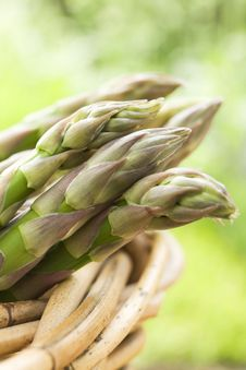 Bunch Of Asparagus In Basket Stock Images