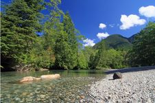 Free Mountain Creek In Summer Royalty Free Stock Photo - 5908955