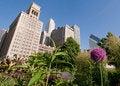 Free Chicago Skyline And Garden Stock Photo - 5919730