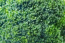 Free Broccoli Closeup Stock Photos - 5910633