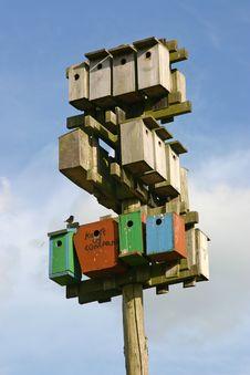 Free Nestling Boxes Stock Photo - 5911100