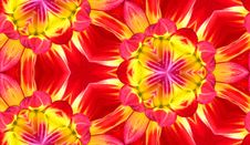 Free Dahlia Seamless Tile Background 4 Stock Photography - 5911172