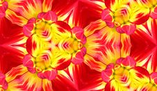 Free Dahlia Seamless Tile Background 4 Royalty Free Stock Photos - 5911208