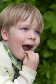Free Surprised Little Boy Royalty Free Stock Photo - 5914445