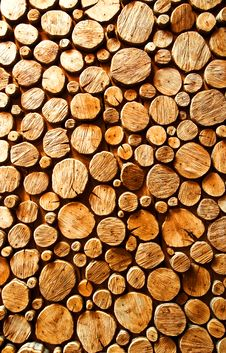 Free Wood Log Backround Royalty Free Stock Photo - 5915255