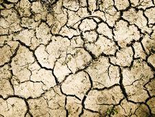 Dry Soil Texture Stock Photos