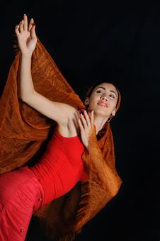 Free Flamenco Dancer Royalty Free Stock Photo - 5918845