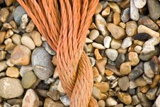Free Rope On A Beach Royalty Free Stock Images - 5919079