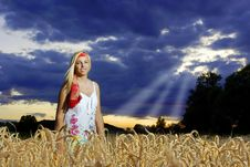 Free Wheat Field And A Girl Stock Photos - 5919103