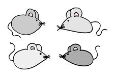Mouses Royalty Free Stock Photos