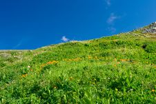 Altay Landscape Royalty Free Stock Image