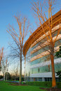 Free Modern Office Building Royalty Free Stock Image - 5924326