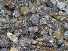 Free Sea Pebble Stock Image - 5921981
