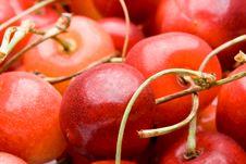Free Fresh Cherry Stock Photography - 5924082
