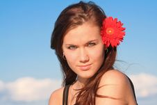 Free Young Lady With Daisy Stock Photos - 5924623