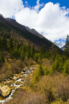 Free Glacier Forest Park Royalty Free Stock Photography - 5925847