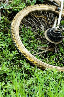 The Wheel Of The Bicycle Royalty Free Stock Images