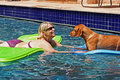 Free Blonde Woman In Pool Looks At Dog Stock Photography - 5932412