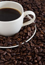 Free Coffee Cup On Coffee Beans Background Stock Images - 5933444