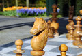 Free Chess Horse Royalty Free Stock Images - 5933869