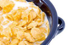 Free Bowl Of Cornflakes With Milk Royalty Free Stock Photos - 5930948