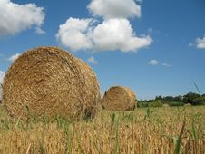 Free Hay Bales Royalty Free Stock Photography - 5931677