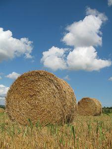 Free Hay Bales Stock Image - 5931691