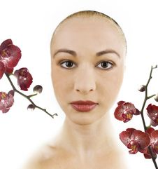 Free Woman And Orchid Flowers Royalty Free Stock Image - 5932946