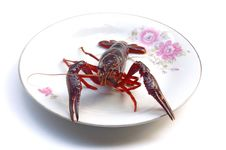 Free Lobster Royalty Free Stock Photos - 5933818