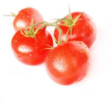 Free Red Tomatoes Royalty Free Stock Images - 5933919