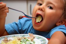 Free Young Boy Indoors Eating Royalty Free Stock Photos - 5934548