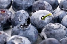 Frozen Blueberries Royalty Free Stock Images