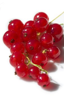 Free Red Berry Stock Photography - 5937292