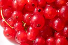 Free Berry Stock Images - 5937404