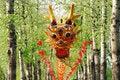 Free Kite Of Dragon Royalty Free Stock Photography - 5949347