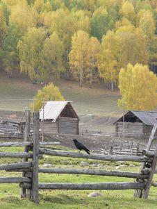 Free Autumn Landscape Stock Images - 5945504